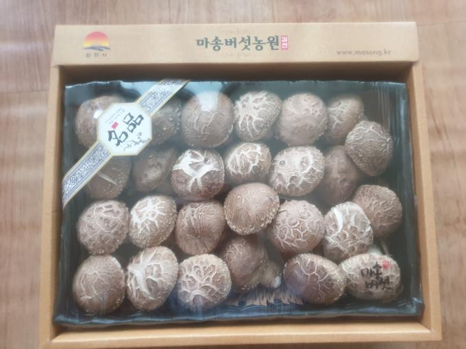 마송버섯선물세트
