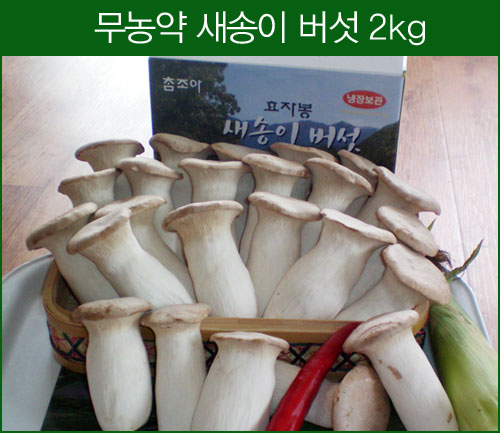 새송이버섯 2kg