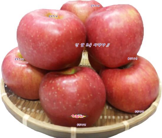 사과(53과 (부사)