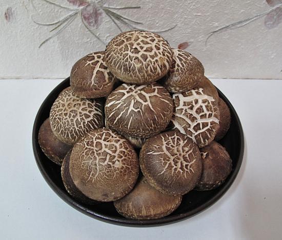 생표고버섯(선물용)