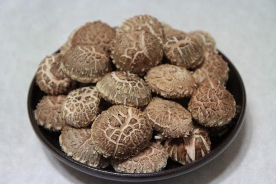 겨울, 봄 표고버섯