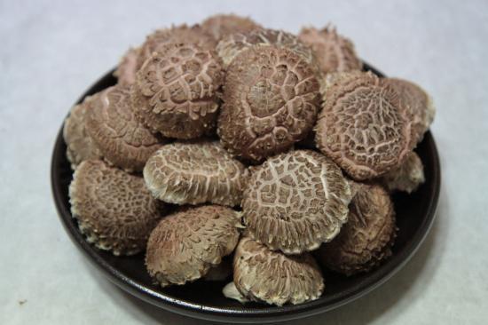 겨울, 봄 표고버섯(가정용)
