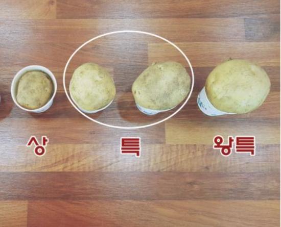 수미감자 (상,특,왕특..
